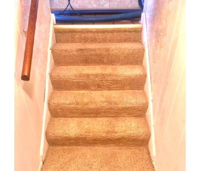 Carpet & Upholstery Cleaning for the Holidays After