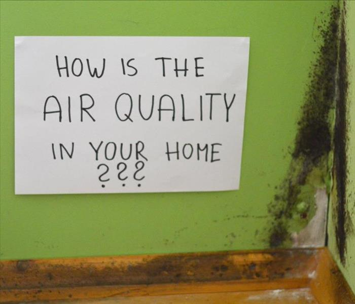 Why SERVPRO We Provide Kankakee Area Mold Inspections and Air Sampling
