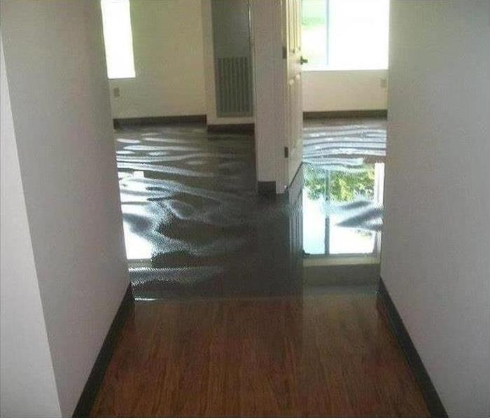 Water Damage Water Extraction from your home in Peotone