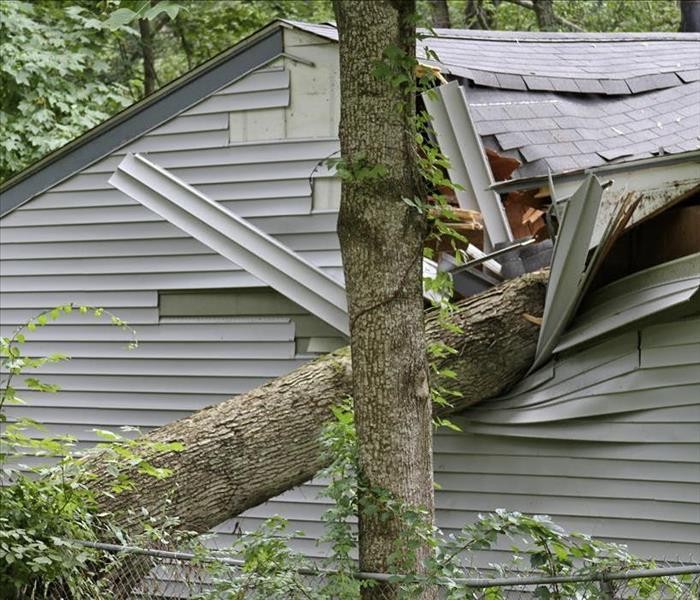 Storm Damage Kankakee Properties, Storms, and Fallen Trees? Call SERVPRO--Fast!