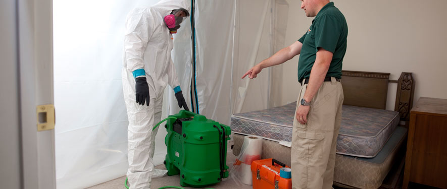 Bourbonnais, IL mold removal process